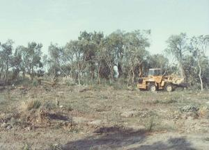 Ground Clearing